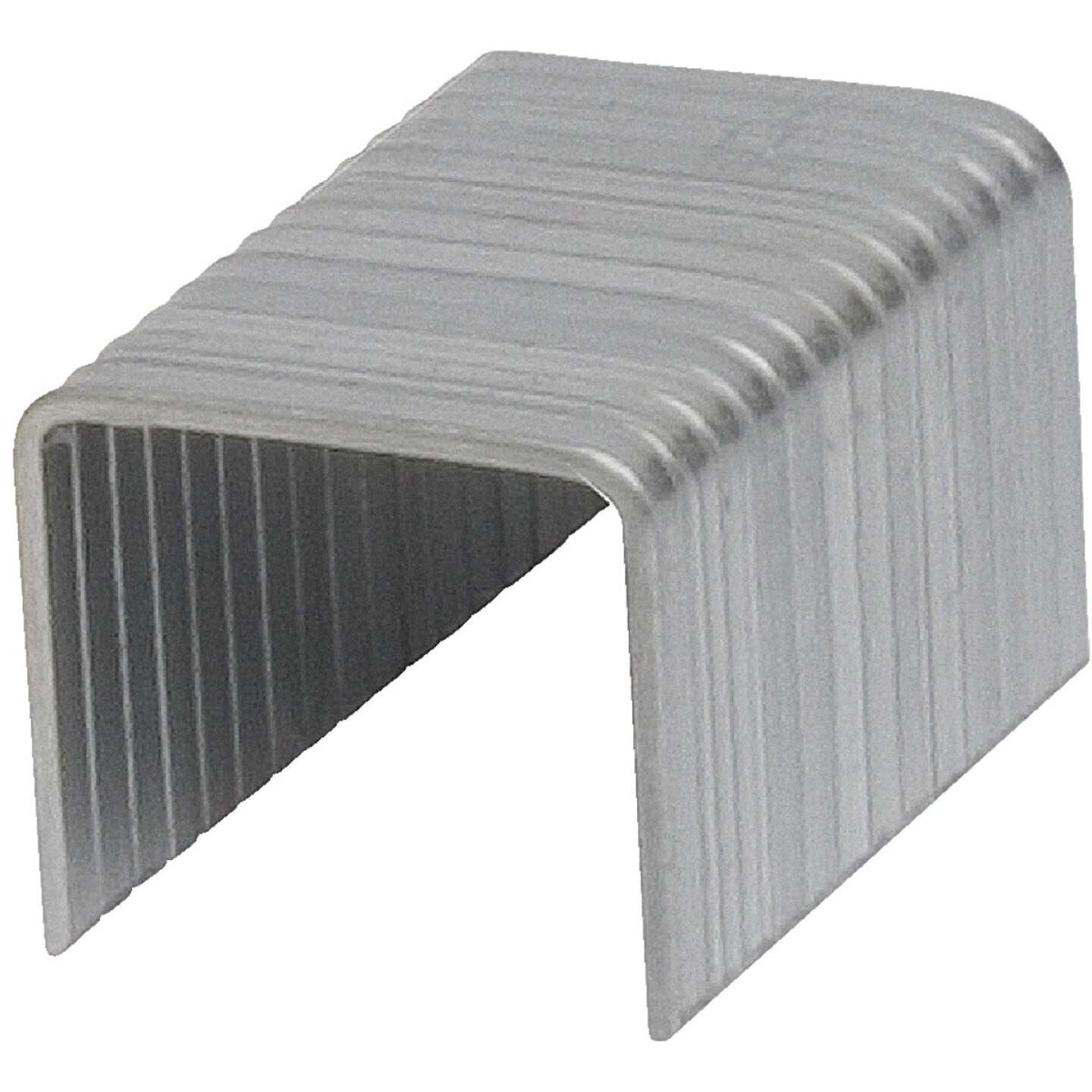 Channellock No. 6 Hammer Tacker Staple, 5/16 In. (5000-Count) Image 2