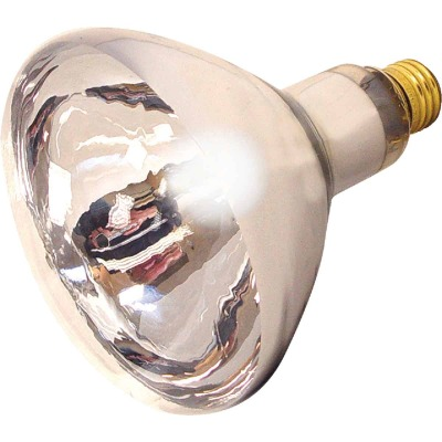 Satco 125W Clear Medium Base R40 Incandescent Heat Light Bulb