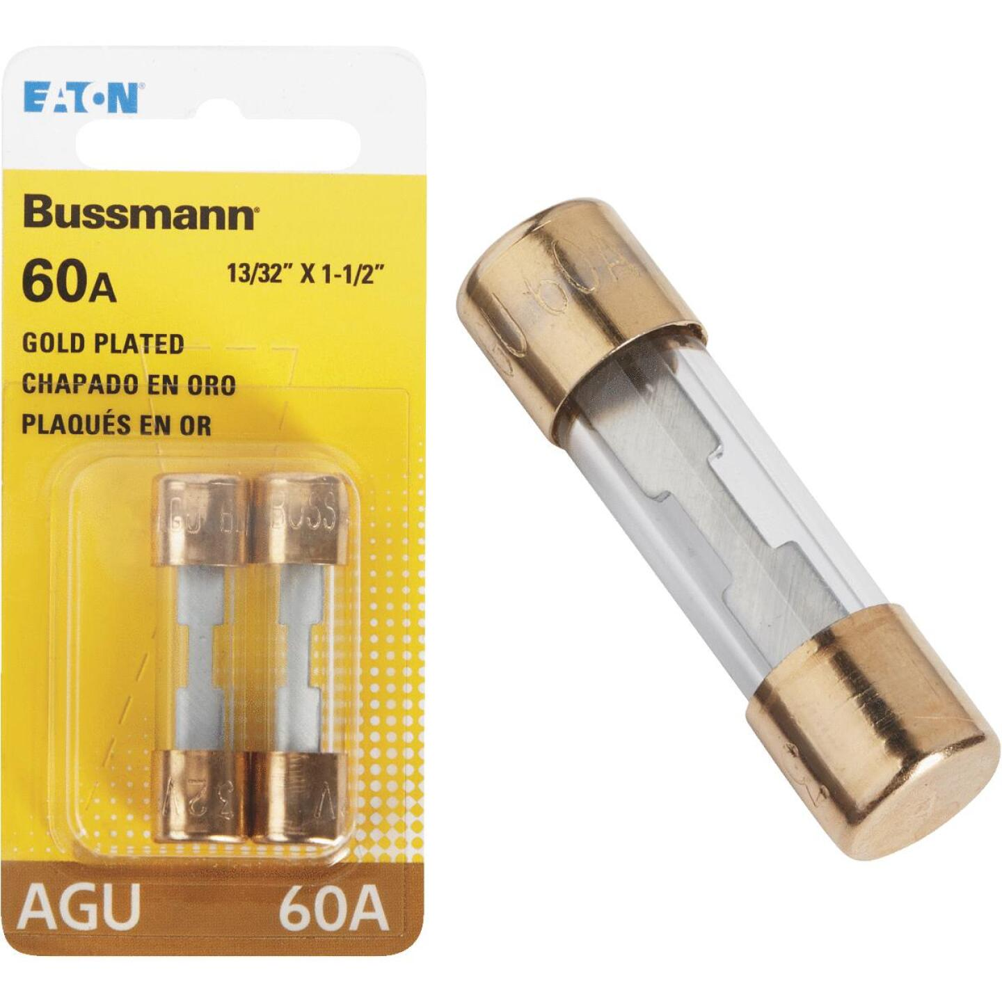 Bussmann 60-Amp AGU Glass Tube Automotive Fuse with Gold-Plated End Caps (2-Pack) Image 1