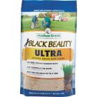 Jonathan Green Black Beauty Ultra 7 Lb. 1400 Sq. Ft. Coverage Tall Fescue Grass Seed Image 1