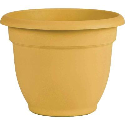 Bloem Ariana 10 In. H. x 10 In. Dia. Plastic Self Watering Earthy Yellow Planter