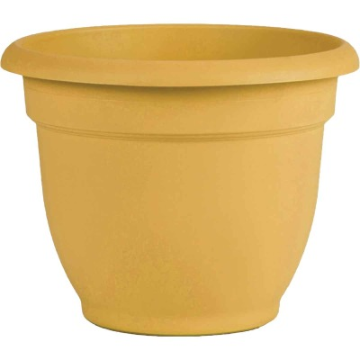 Bloem Ariana 10 In. H. x 10 In. Dia. Plastic Self Watering Earthy Yellow Planter