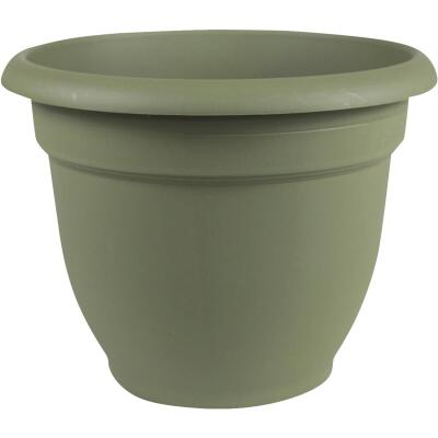 Bloem Ariana 13.75 In. H. x 16 In. Dia. Plastic Self Watering Living Green Planter